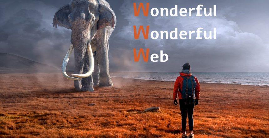 Wonderful Wonderful Web